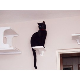 MINI - mała półka dla kota