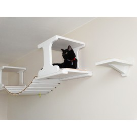 Gonzo - Suspension Cat Bridge