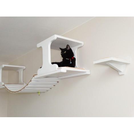 Gonzo - Suspension Cat Bridge