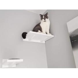 Półka dla kota Molly